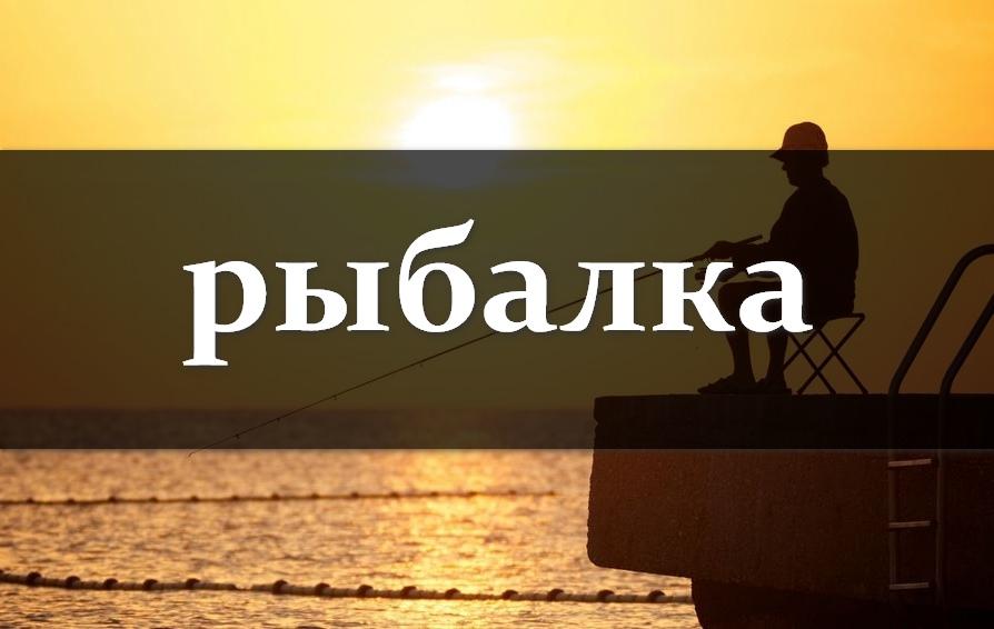 Стоит ли брать франшизу по рыболовному магазину